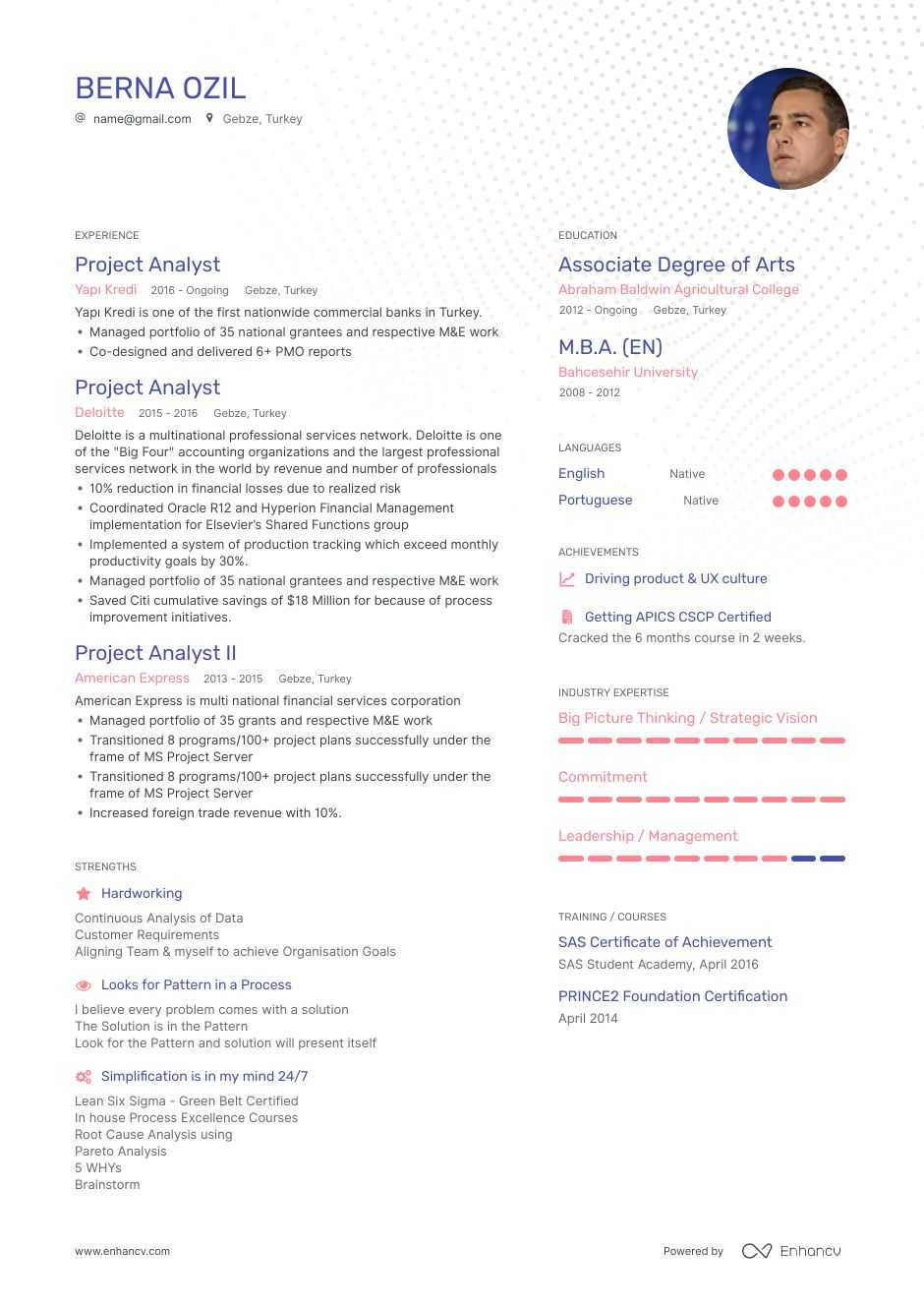 it project manager resume for project analyst