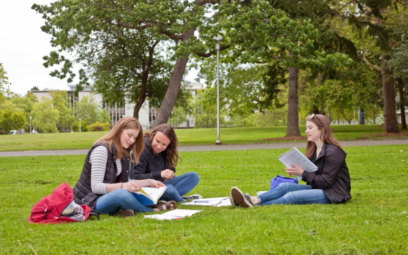 How to Find the Best School to Study in Canada